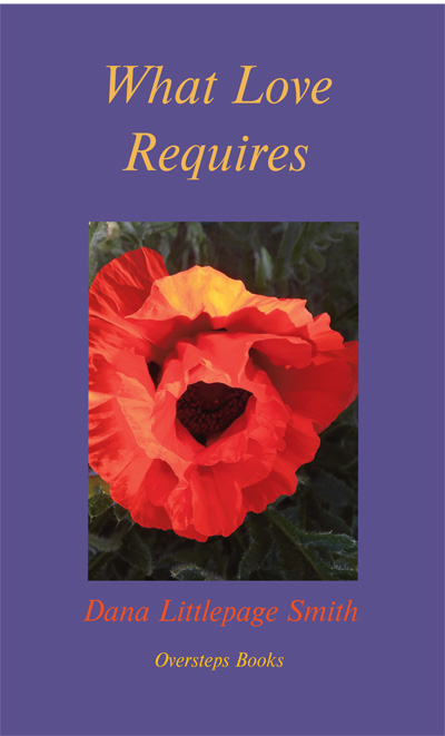 'What Love Requires': cover